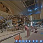 Smithsonian: visita virtuale navigabile del museo di storia naturale