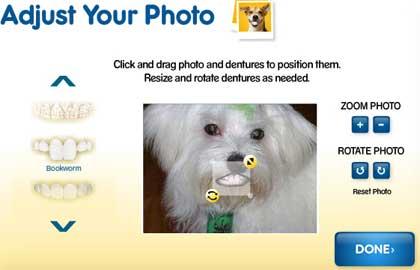 cane parlante con denture your dog