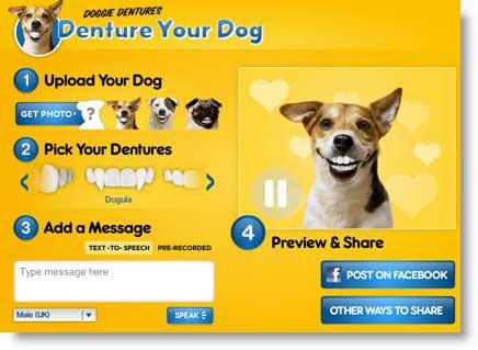 Crea animazioni parlanti con le foto del tuo cane