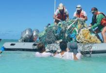 Le materie plastiche devono cambiare per proteggere la vita marina?