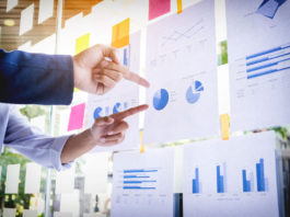 Junior Enterprise e Business Plan: cosa sono e perché sono importanti per l'impresa